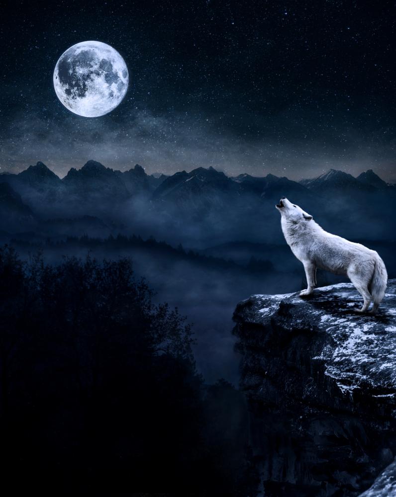 Mattepainting el lobo y la luna